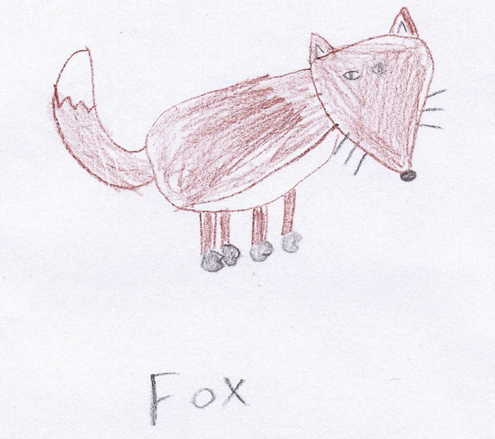 Child's drawing of fox