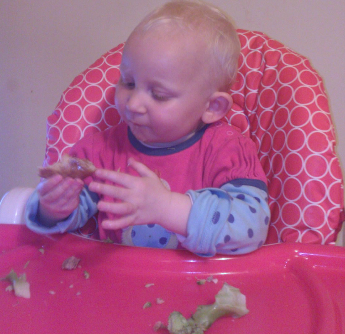 1 Baby led weaning