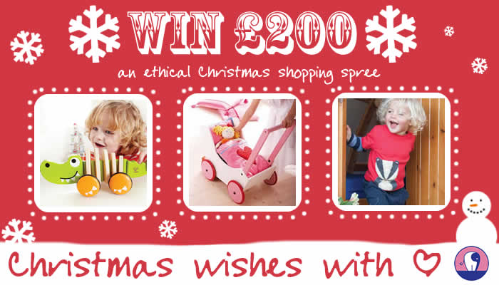 win Christmas shopping 2013