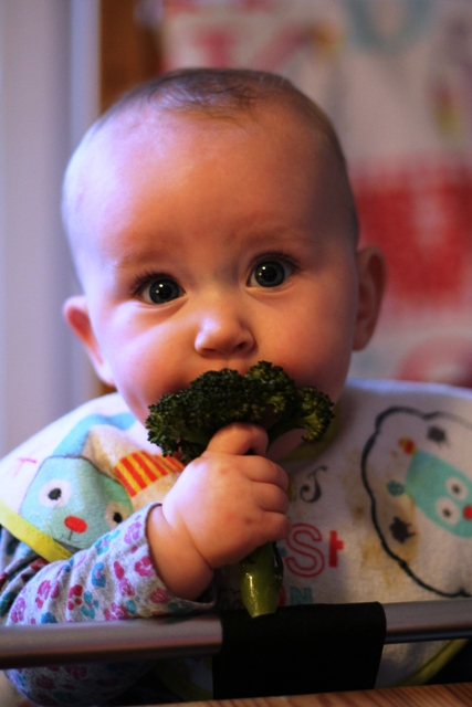 26th February 61 An experience of Baby Led Weaning