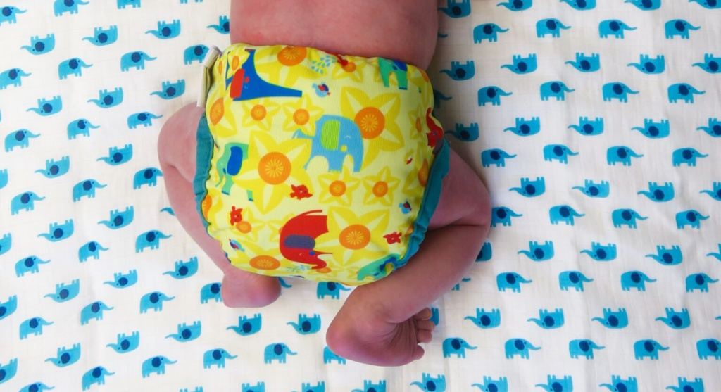 Baby Changing & Nappies Tickle Tots All In Two Camping Print Reusable Cloth Nappy Brand New Buy Now Nappies