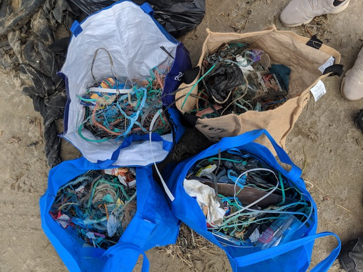 Plastic waste collected during a beach clean