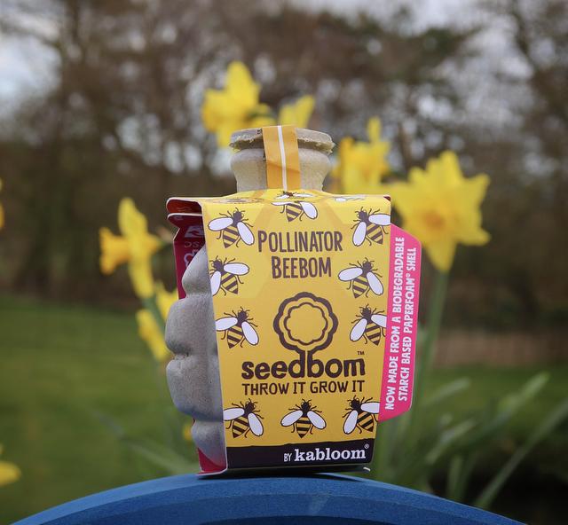 Pollinator Seedbom