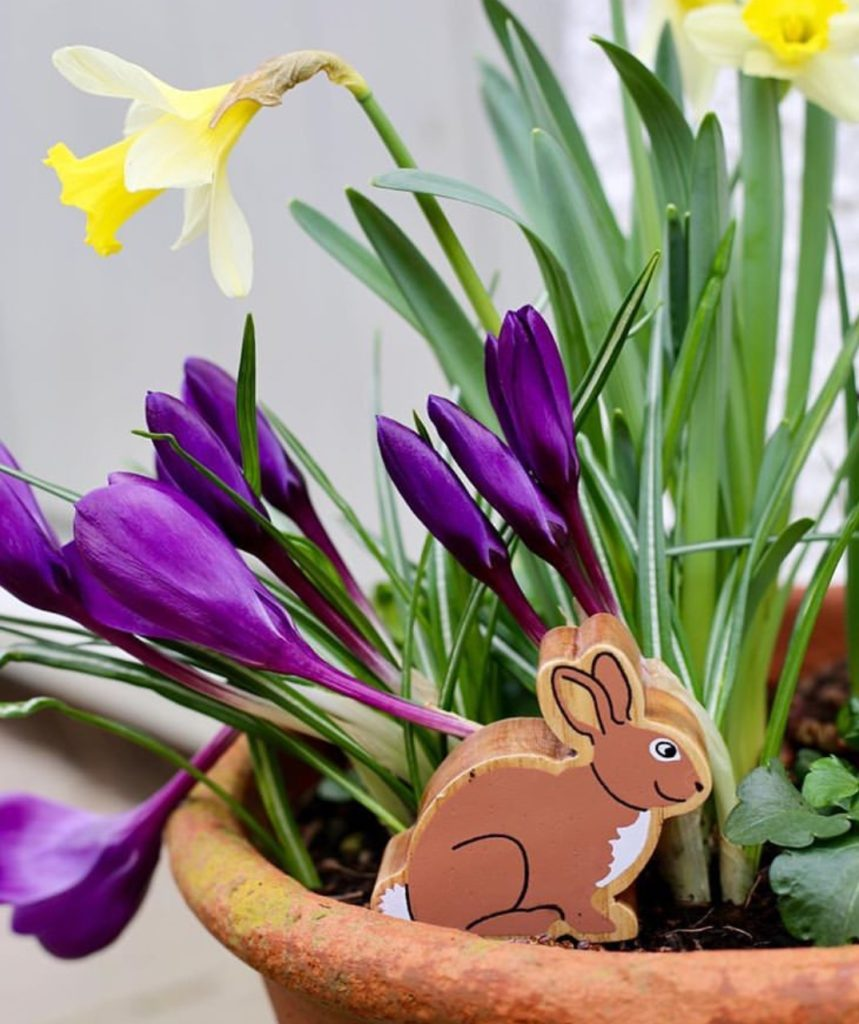 Lanka Kade bunny makes a great Easter Gift for Easter hunts
